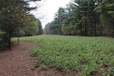 Jackson County, Clark County, Trempealeau County, Buffalo County, Monroe County, Chippewa County, Eau Claire County Residential Lots & Land For Sale: 40 Acres Prairie Rd E