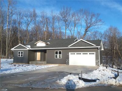 Menomonie WI Single Family Home For Sale: $289,900