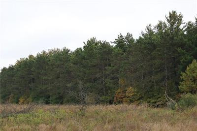 Jackson County, Clark County, Trempealeau County, Buffalo County, Monroe County, Chippewa County, Eau Claire County Residential Lots & Land For Sale: 32 Acres Prairie Rd W