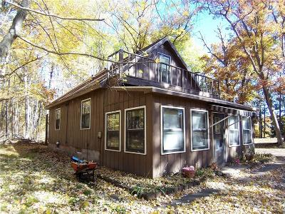 Webster Single Family Home For Sale: 27937 County Rd Ff