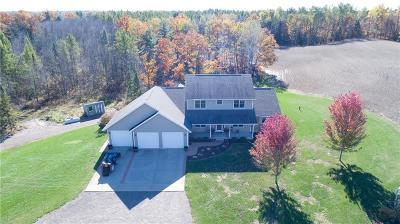 Jackson County, Clark County Single Family Home For Sale: W9857 County Line Road
