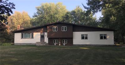 Eau Claire Single Family Home For Sale: W6765 Spehle Rd