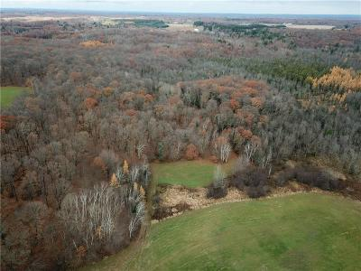 Jackson County, Clark County, Trempealeau County, Buffalo County, Monroe County, Chippewa County, Eau Claire County Residential Lots & Land For Sale: Plummer Lake Road