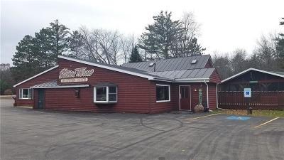 Clark County Commercial For Sale: W8210 Hwy J