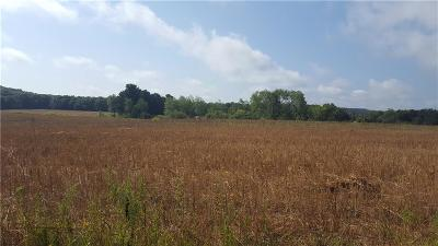 Jackson County, Clark County, Trempealeau County, Buffalo County, Monroe County, Chippewa County, Eau Claire County Residential Lots & Land For Sale: 40 Acres (3) Cedar Road
