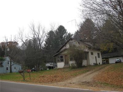 Menomonie Single Family Home For Sale: N5291 410th Street
