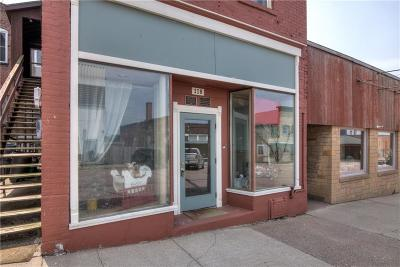 Clark County Commercial For Sale: 118 W 6th Street
