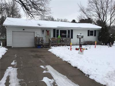 Chippewa Falls Single Family Home For Sale: 1002 W Spruce Street
