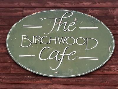 Birchwood Commercial For Sale: 121 Main Street