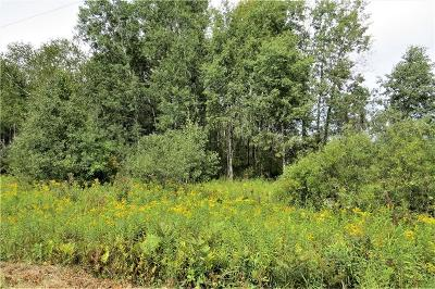 Jackson County, Clark County, Trempealeau County, Buffalo County, Monroe County, Chippewa County, Eau Claire County Residential Lots & Land For Sale: Lot 22948 120th Avenue