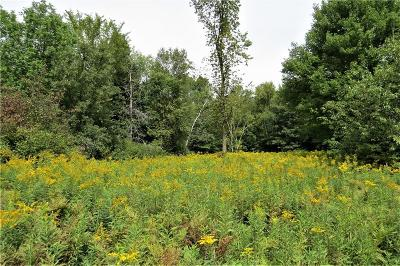 Jackson County, Clark County, Trempealeau County, Buffalo County, Monroe County, Chippewa County, Eau Claire County Residential Lots & Land For Sale: 00 120th Ave
