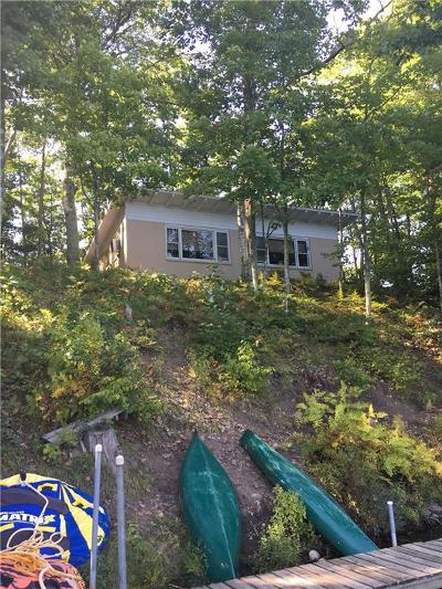 Iron River WI Single Family Home For Sale: $249,000
