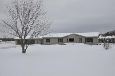 Eleva WI Single Family Home For Sale: $347,000
