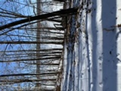 Birchwood Residential Lots & Land For Sale: Hwy F