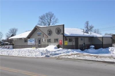 Pigeon Falls WI Commercial For Sale: $349,900