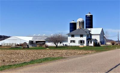 Jackson County, Clark County Farm For Sale: N10235 Old Stage Road
