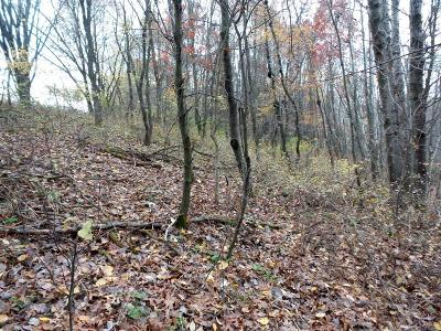 Alma Center WI Residential Lots & Land Inactive: $25,000