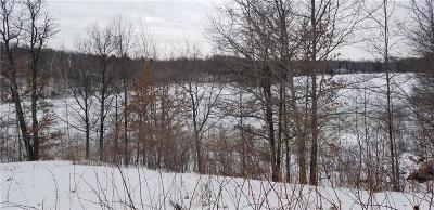 Birchwood Residential Lots & Land For Sale: N2577 Spider Lake Trail