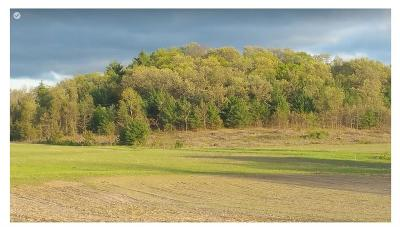 Black River Falls WI Residential Lots & Land For Sale: $199,900