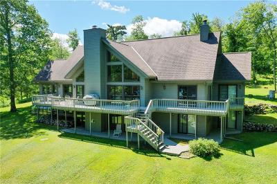 Single Family Home For Sale: 49080 S River Road