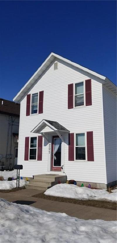 Chippewa Falls Single Family Home For Sale: 205 S Grove Street
