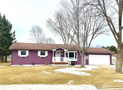 Barron County Single Family Home For Sale: 1026 N Wisconsin Avenue