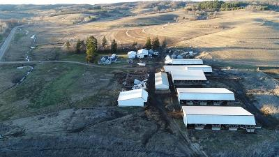 Jackson County, Clark County Farm For Sale: N11192 County Road G