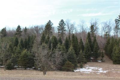Residential Lots & Land For Sale: Lot 1 Csm 4403 1250th Avenue