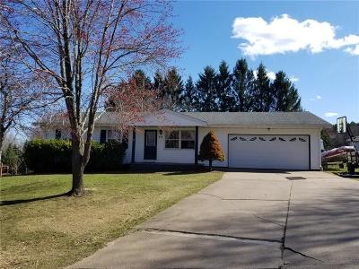 RICE LAKE Single Family Home For Sale: 912 Terrace Drive