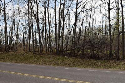 Rice Lake Residential Lots & Land For Sale: 00 S Wisconsin Avenue