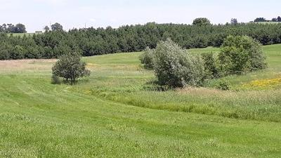 Jackson County, Clark County Residential Lots & Land For Sale: Hart Road