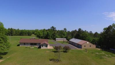 Webster Single Family Home For Sale: 6713 County Road X