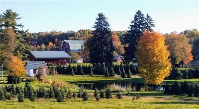 Barron County Single Family Home For Sale: 742 17 16 3/4 Avenue