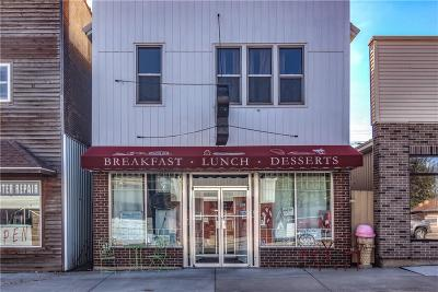 Clark County Commercial For Sale: 221 N Washington Street