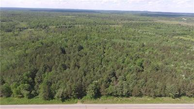 Clark County Residential Lots & Land For Sale: 179.29 Acres St Hwy 95