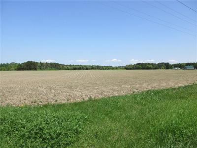 Chetek Residential Lots & Land Active Under Contract: 00 County Hwy Ss