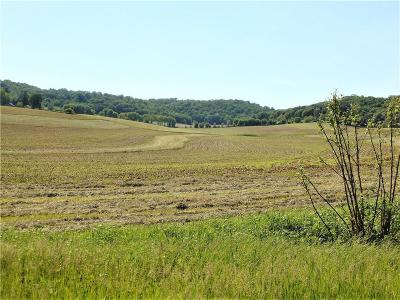 Jackson County, Clark County Residential Lots & Land For Sale: North Branch Road