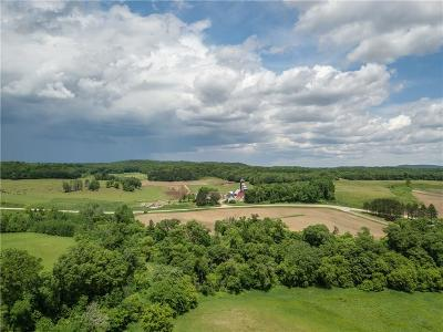 Colfax WI Residential Lots & Land For Sale: $219,900