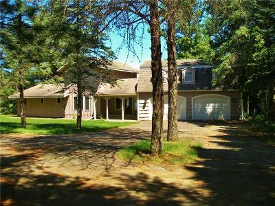 Single Family Home For Sale: 1009 S Lake Drive