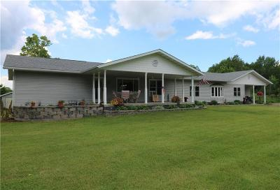 Barron Single Family Home For Sale: 20535 County Road H