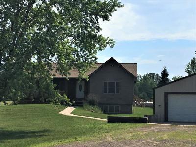 Danbury Single Family Home For Sale: 28530 N River Road