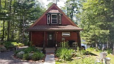 Single Family Home For Sale: 8934 N Lakeshore Drive