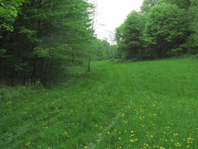 Jackson County, Clark County Residential Lots & Land For Sale: N13282 Johnson Road