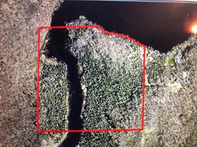 Birchwood Residential Lots & Land For Sale: 123 Leonard Road
