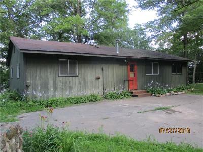 Webster Single Family Home For Sale: 6229 Devils Lake Road