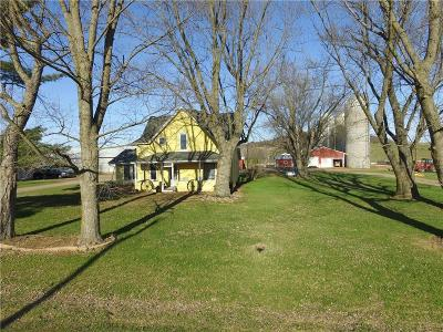 Farm For Sale: 24523 30th Street