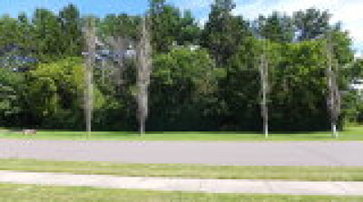 Rice Lake Residential Lots & Land For Sale: Outlot 276 Cameron Road