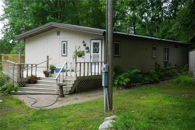 Single Family Home For Sale: 9775 McCarry Lake Road