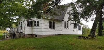 Bruce WI Single Family Home For Sale: $270,000