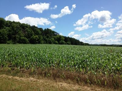 Jackson County, Clark County, Trempealeau County, Buffalo County, Monroe County, Chippewa County, Eau Claire County Residential Lots & Land For Sale: Lot 5 May Coulee Road